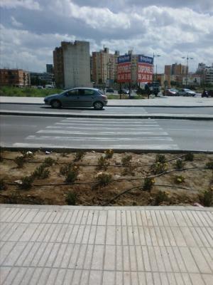 FOTO – DENUNCIA DE ALZIRA (22) __ EL BLOC DENÚNCIA EL DESPROPOSIT DE TULELL