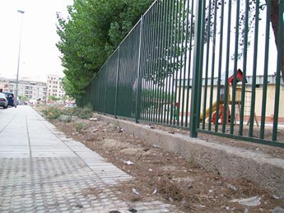 FOTO – DENUNCIA DE ALZIRA (39) – LA SUCIEDAD EXISTENTE EN EL COLEGIO AUSIÀS MARCH