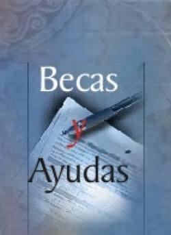 EL AYUNTAMIENTO DE ALZIRA CONVOCA LAS BECAS DE INVESTIGACIÓN PARA EL CURSO 2008-2009