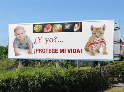 ABORTO: OJOS QUE NO VEN...